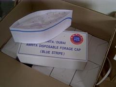 Blue Stripe Foragea Cap