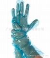 一次性LDPE手套
