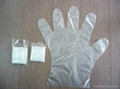 disposable polythene glove 1