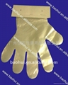 paper card PE gloves food grade  1