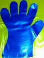 塑料一次性手套餐饮手套家务手套
