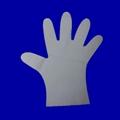 TPE食品加工手套,醫用檢查手套 2
