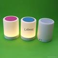 Wireless Smart Flashing LED light Bluetooth Speaker