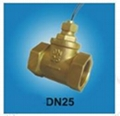 FS-DN25T   FLOW SWITCH