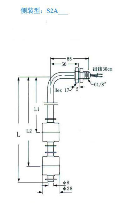 侧装不锈钢液位开关LSS2A1-2 2