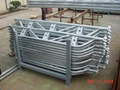 ringlock system scaffolding
