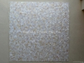 Mesh 10x10mm/300x300mm White MOP Mosaic Tile, Butt-joint gap format