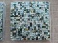 Mesh 15x15mm/300x300mm Blacklip Seashell MOP mosaic tile, Butt-joint gap format