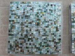 Mesh 10x10mm/300x300mm Blacklip Seashell MOP mosaic tile, Butt-joint gap format