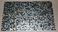 Dia. 20mm Blacklip Seashell MOP Mosaic Tile