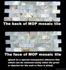 plastic mounted MOP mosaic tile