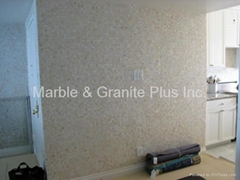 Mesh Mother of Pearl Mosaic Tiles for rooms