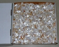Random Mother of Pearl Mosaic Chips