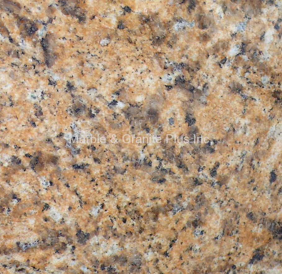 New Venetian Gold Dark China Manufacturer Granite