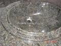 Pedestal Sink 5