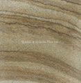 Wood Vein Yellow sandstone