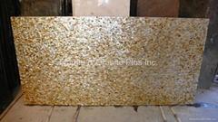 25x15mm/2430x1210x20mm Solid Yellowlip Seashell MOP slab