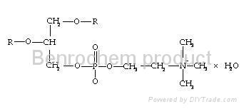 Polyene Phosphatidylcholine