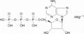 Adenosine 5'-triphosphate Magnesium