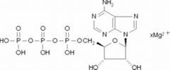 三磷酸腺苷鎂鹽