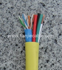 1 CAT5e + Speaker Cable(Combo Type)