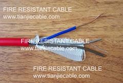 Fire Flex Fire Resistant Cable PH30 2×1.0mm2