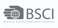 Summary Audit Report of BSCI