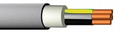 NYM-J PVC WIRING CABLE BS EN 50265-2-1