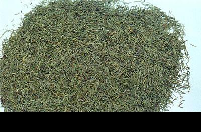 迷迭香葉片(食品、茶飲級) 2