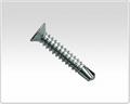 flat head self drilling screw