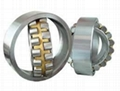 Large Spherical Roller Bearings
