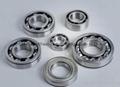 Cylindrical Roller Bearings NJ2211EM