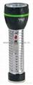 LED Metal/Steel-Plastic Colour Flashlight/Torch TWJ2DE2