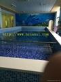 供应浙江游泳池水处理设备工程 2