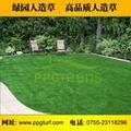 庭院人造草 3