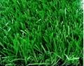 幼儿园人造草坪 4