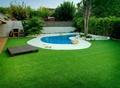 庭院景觀綠化人工草皮 5
