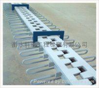 桥梁伸缩缝 2