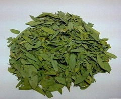 Senna Leaf Extract Sennosides 4% by HPLC,Sennosides 8% by UV