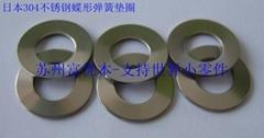DIN2093標準不鏽鋼碟形彈簧墊圈