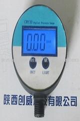 創威南京CWY30經濟型數顯壓力表