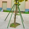 Recycle Plastic Tree Support 5ft