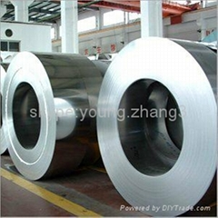 Hot dipped galvanized coil hot-dip GI