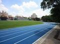 IAAF certified Prefabricated Athetlic Running Track 2