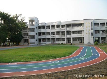 IAAF Certified Prefabricated Rubber Runway Track 2