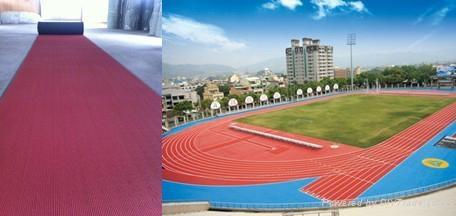 Stadium Running Track Surface 2