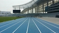 IAAF Certified Synthetic Surface for Running Track 2