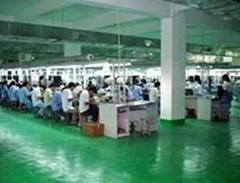 Ding Feng Enterprises (HK) Co. Ltd.