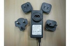 24W interchangebale plugs power supply