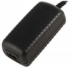 12V 4.2A Power supply in desktop type
